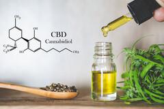 CBD extrait de la graine de chanvre