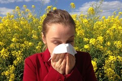 Rhume des foins, quels traitements naturels ?