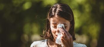 Fiche Thérapeutique : Allergies saisonnières  - Alternative Santé