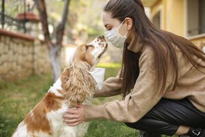 Nos animaux de compagnie ne jouent aucun rôle dans la propagation du SARS-CoV-2