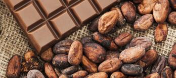 Vous aimez le chocolat ? Voici pourquoi vous avez bien raison !  - Alternative Santé