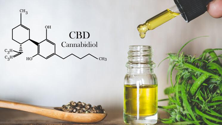 Indications médicales du cannabis