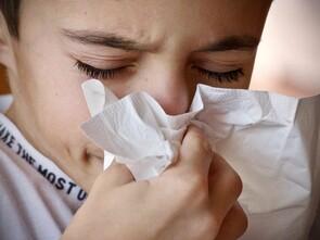 Le coronavirus et les rhinovirus sont capables de se multiplier dans les fosses nasales.
