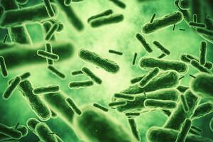 L'argent colloïdal a montré un effet antibactérien sur Escherichia coli notamment.
