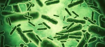 L'argent colloïdal contre les bactéries multi-résistantes - Alternative Santé