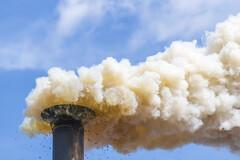 Alerte sur la dangerosité de la pollution de l'air sur les jeunes cerveaux