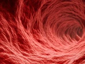 Les capillaires peuvent être agressés directement ou indirectement.