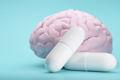 Cuivre et zinc essentiels à notre mémoire