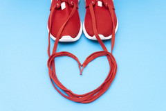 L'activité physique, essentielle pour votre santé cardiovasculaire !