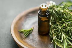 L'huile essentielle de romarin à verbénone pour soulager les jambes sans repos