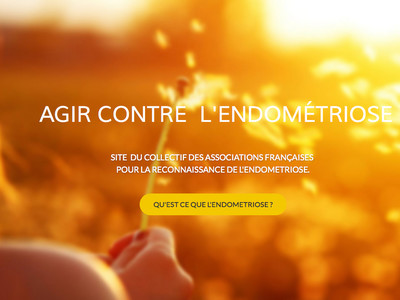agir-contre-l-endometriose-alternativesante.fr