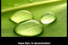 Aqua Dyn, la dynamisation