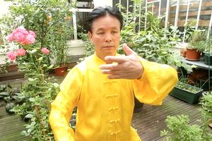 Maître Zunlin Zhang
