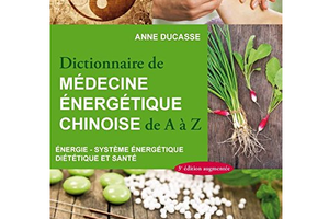 Dictionnaire de la médecine chinoise, d'Anne Ducasse