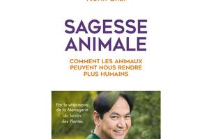 Sagesse animale, comment les animaux peuvent nous rendre plus humains, de Norin Chai