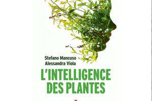 L'intelligence des plantes, de Stefano Mancuso et Alessandra Viola