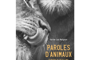 Paroles d'animaux, de Karine Lou Matignon