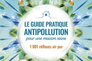 Le guide pratique antipollution pour une maison saine, d'Isabelle Pacchioni