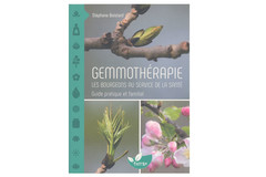 Gemmothérapie, les bourgeons au service de la santé