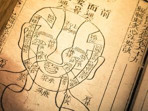Traité de médecine de la dynastie Qing