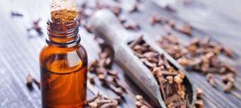 Antimoustique naturel : une recette polyvalente à base d'huiles essentielles  - Alternative Santé