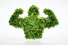 2018 : le début d'une ère végétale ?