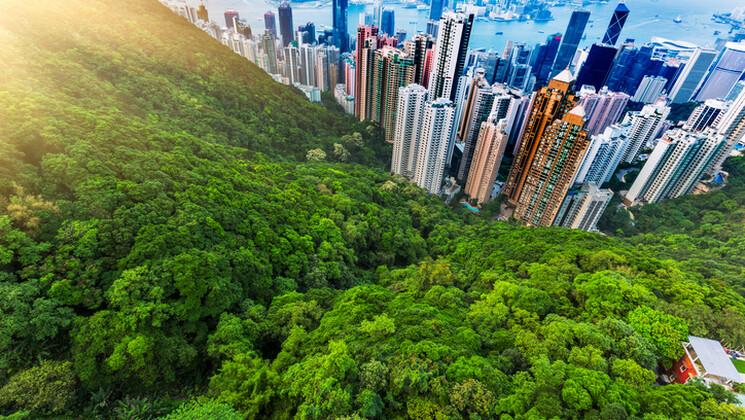 L'urbanisation en zone tropicale, une source potentielle de pandémies.