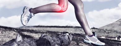 Le curcuma aide à maintenir la santé des articulations, des os et des muscles, et à soulager la douleur.