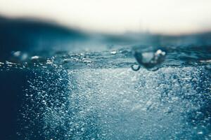Le seul moyen d'acheminer de l'oxygène au sein de la celulle, c'est l'eau.