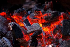 Du charbon pour éteindre le feu intestinal