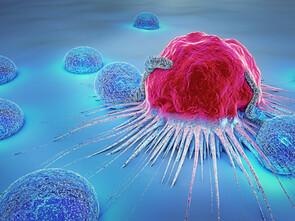 Une cellule cancéreuse attaquée par des lymphocytes.
