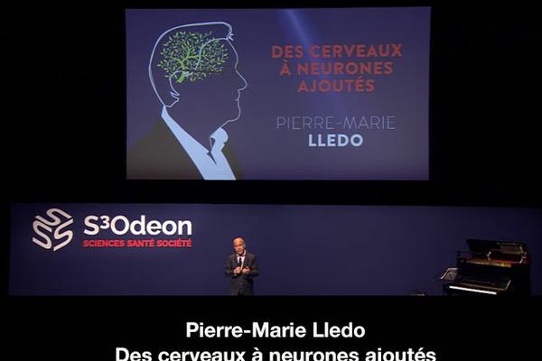 Pierre-Marie Lledo Des cerveaux à neurones ajoutés