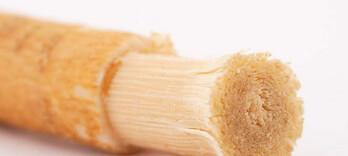 Le siwak purifie la bouche et ferait plaisir au Bon Dieu - Alternative Santé