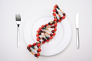 La nutrigénomique étudie la manière dont les aliments agissent sur l'organisme.