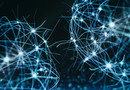 Encourager la neurogénèse