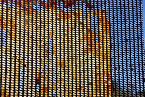 La propolis, protecteur naturel de la ruche. Et contre le Covid-19 ?