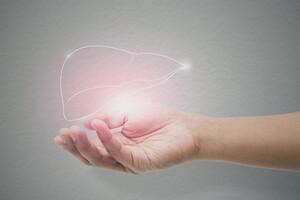 L'énergie du foie a tendance à s'élever, se déployer et s'extérioriser.