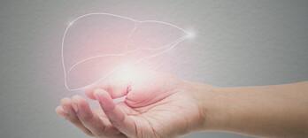 Stress et foie: la grande crise - Alternative Santé