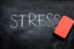 De quelle manière le stress affecte-t-il l'immunité ?