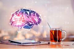Le thé améliore les connections cérébrales