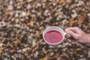 Constipation : une tisane pour celles qui ont déjà tout essayé