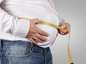 La graisse ventrale, facteur de risque cardiovasculaire