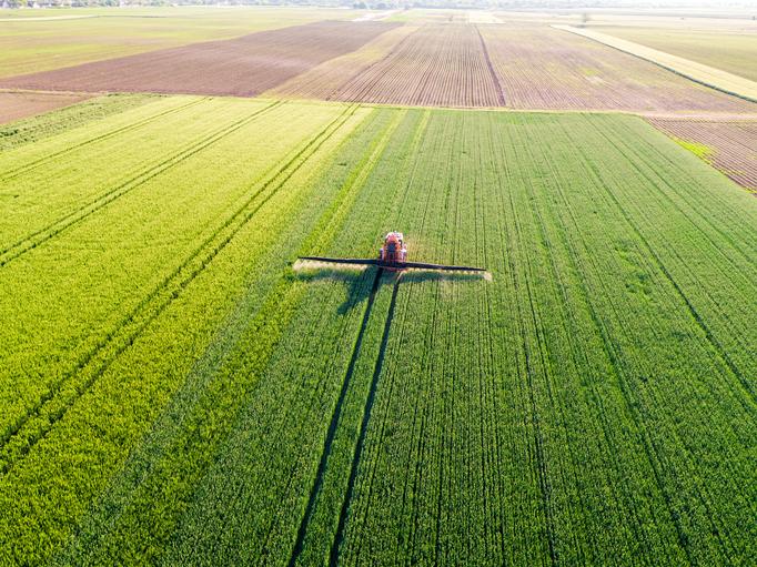 Nouveaux OGM :  « Les semenciers ne sont pas transparents sur les méthodes utilisées » (Inf'OGM)