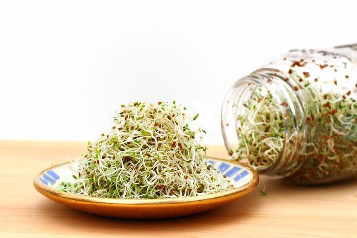 Santé et confinement : augmentez votre vitalité grâce aux graines germées
